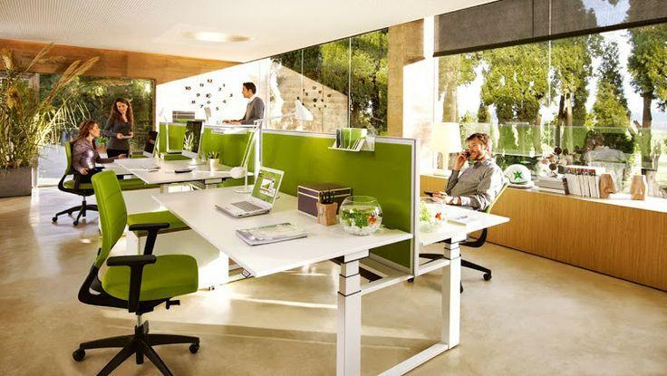 Cara Desain Kantor yang Hemat Energi